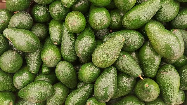 avocado ovoce.jpg